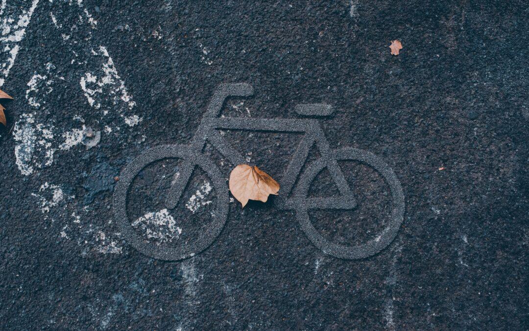 brown leaf on black concrete floor