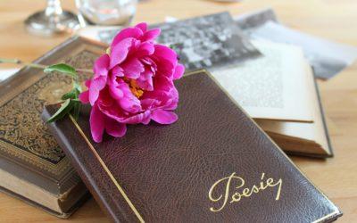 Niektórzy lubią poezję… – my, polonistki, bez wątpienia!