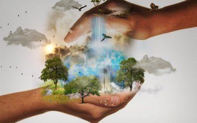 """""""Ochrona środowiska na Opolszczyźnie okiem przyrodnika"""""""